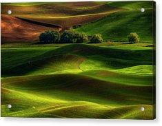 Spring In The Palouse Acrylic Print