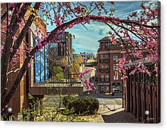 Spring In The Scenic City Acrylic Print