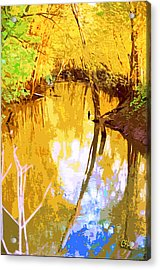 Spring In The Woods Acrylic Print