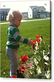 Spring Innocence Acrylic Print by Brigitte Emme