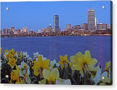 Spring Into Boston Acrylic Print by Juergen Roth