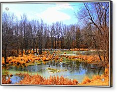 Spring Is In The Air Acrylic Print by Sheila Werth