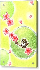 Acrylic Print featuring the drawing Spring by Keiko Katsuta