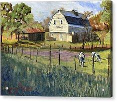 Spring Lake Smiling Barn Acrylic Print by Jeff Brimley
