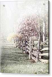 Spring Landscape With Fence Acrylic Print by Elena Elisseeva