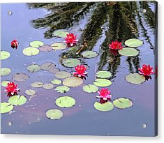 Spring Lilly Acrylic Print