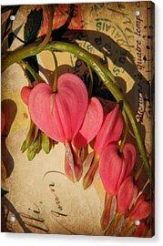 Spring Love Acrylic Print by Chris Berry