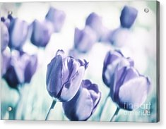 Spring Love II Acrylic Print by Angela Doelling AD DESIGN Photo and PhotoArt