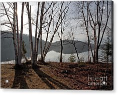 Spring Mist Acrylic Print