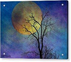 Spring Moon Acrylic Print by Dave Hrusecky