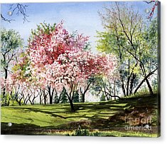 Spring Morning Acrylic Print by Barbara Jewell