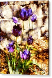 Spring Morning Tulips Acrylic Print