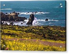 Spring On The California Coast By Denise Dube Acrylic Print