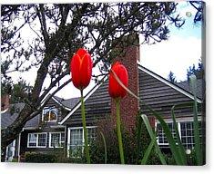 Spring On The Oregon Coast Acrylic Print by Will Borden