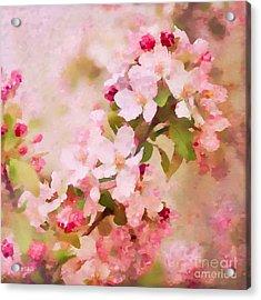 Spring Pink Acrylic Print by Betty LaRue