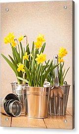 Spring Planting Acrylic Print by Amanda Elwell