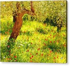 Spring Poppies Impressionism Acrylic Print