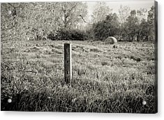 Spring Post And Bale In Black N White Acrylic Print by Tracy Salava