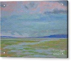 Spring Rain At Lake Jackson Acrylic Print