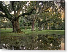 Spring Rain In New Orleans Acrylic Print by Ray Devlin