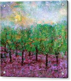 Spring Rain Acrylic Print by Jim Whalen