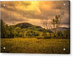 Spring Rain - White Mountains -maine Acrylic Print by Bob Orsillo
