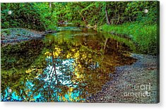 Spring Reflection  Acrylic Print by Peggy Franz