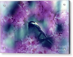 Spring Rhapsody Blossoms Acrylic Print by Cathy  Beharriell