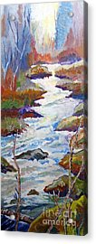 Spring River Rushing Acrylic Print by Frank Giordano