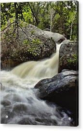 Acrylic Print featuring the photograph Spring Runoff by Ellen Heaverlo