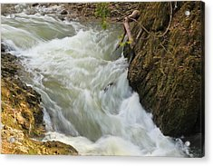 Acrylic Print featuring the photograph Spring Rush by Julie Andel