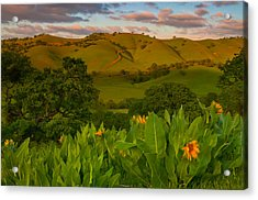 Spring Scene At Round Valley Acrylic Print by Marc Crumpler