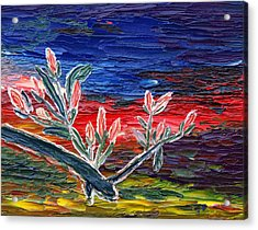 Spring Spirit Acrylic Print by Vadim Levin