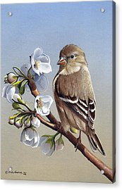 Acrylic Print featuring the painting Spring Splendor by Mike Brown