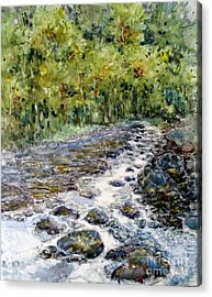 Spring Stream Acrylic Print by Louise Peardon