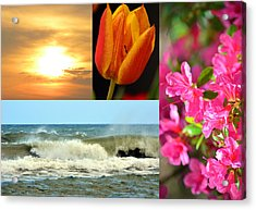Spring Summer Collage Acrylic Print by Sandi OReilly