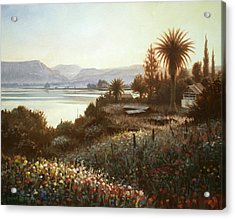Spring Sunset  Northern Galilee Acrylic Print by Graham Braddock