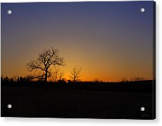 Spring Sunset Pops Through Trees Acrylic Print