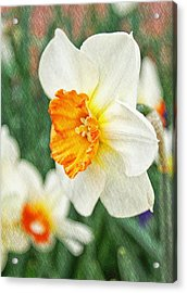Spring Texture Acrylic Print by Cathie Tyler