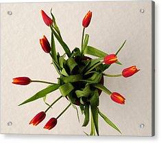 Spring Thaw Acrylic Print by Luke Moore