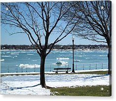 Spring Thaw Acrylic Print by Mary Bedy