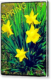 Spring Acrylic Print by Thommy McCorkle