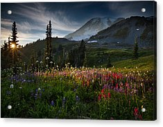 Spring Time At Mt. Rainier Washington Acrylic Print by Larry Marshall