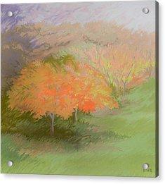 Spring Trees Acrylic Print by Bruce Richardson
