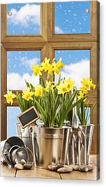 Spring Window Acrylic Print by Amanda Elwell