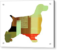 Springer Spaniel  Acrylic Print by Naxart Studio