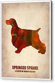 Springer Spaniel Poster Acrylic Print by Naxart Studio