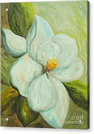Spring's First Magnolia 2 Acrylic Print by Eloise Schneider