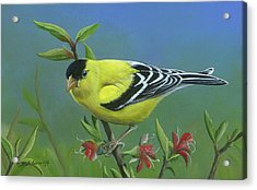 Acrylic Print featuring the painting Spring's Return by Mike Brown