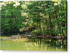 Springtime At Crystal Lake Acrylic Print by John Carroll
